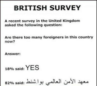 recent: BRITISH SURVEY  A recent survey in the United Kingdom  asked the following question:  Are there too many foreigners in this country  now?  Answer:  18% said:  YES  82% said: