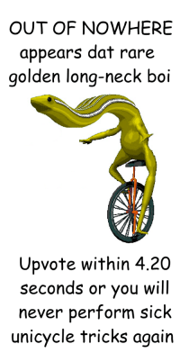 The rarest of dat bois: OUT OF NOWHERE  appears dat rare  golden long-neck boi  Upvote within 4.20  seconds or you will  never perform sick  unicycle tricks again The rarest of dat bois