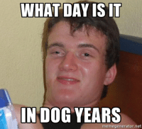 My friend dropped this one on me: WHAT DAY IS IT  IN DOG YEARS  memegenerator.net My friend dropped this one on me