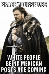 I don't like Corona.: BRACE YOURSELVES  WHITE PEOPLE  BEING MEXICAN  POSTS ARE COMING  DOWNLOAD MEME GENERATOR FROM HTTP://MEMECRUNCH.COM I don't like Corona.