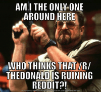 Bring on the hate: AMI THE ONLY ONE  AROUND HERE  WHO THINKS THAT IR/  THE DONALD IS RUINING  REDDIT  DOWNLOAD MEME GENERATOR PROM HTTP://MEMECRUNCH COM Bring on the hate