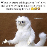 """😂😭😂 RP @sweetpsych0 💕: When he starts talking about """"we"""" a lot  and you're trying to figure out when he  started taking French  @sweetpsycho 😂😭😂 RP @sweetpsych0 💕"""