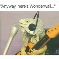 "🎵🎶 @dabmoms: ""Anyway, here's Wonderwall..."" 🎵🎶 @dabmoms"