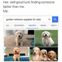 lol, on it.: Her: well good luck finding someone  better than me.  Me:  golden retriever puppies for sale  X  ALL SHOPPING  IMAGES  NEWS  VIDEO  amo wad lol, on it.