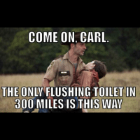 In the zombie apocalypse, flushing toilets may just be the greatest thing ever.: COME ON, CARL  THE ON  FLUSHING TOILET IN  300 MILES IS THIS WAY In the zombie apocalypse, flushing toilets may just be the greatest thing ever.