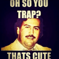 trap: OH SO YOU  TRAP  THATS CUTE
