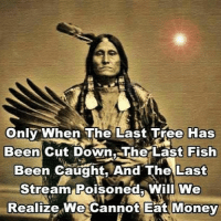 realtalk: Only When The Last Tree Has  Been Cut Down..The Last Fish  Been Caught, And The Last  Stream Poisoned Will We  Realize We cannot Eat Money realtalk