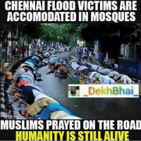 Incredible India ❤️-PROUDINDIAN BrotherHood-United we are, united we will stay 💕: CHENNAI FLOOD VICTIMSARE  ACCOMMODATED IN MOSQUES  Bhai  Dekh MUSLIMS PRAYED ON THE ROAD  HUMANITY ISSTILL ALIVE Incredible India ❤️-PROUDINDIAN BrotherHood-United we are, united we will stay 💕