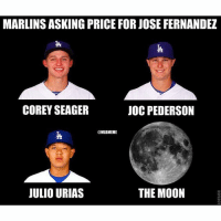 Marlins asking price for Jose Fernandez be like...: MARLINS ASKING PRICE FOR JOSE FERNANDEZ  COREY SEAGER  JOC PEDERSON  MLBMEME  THE MOON  JULIO URIAS Marlins asking price for Jose Fernandez be like...