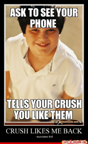 Crush Likes Me Backhttp://omg-humor.tumblr.com: AŞK TO SEE YOUR  PHONE  TELLS YOUR CRUSH  YOU LIKE THEM  Memestache.com  CRUSH LIKES ME BACK  -success kid  TASTE OF AWESOME.COM Crush Likes Me Backhttp://omg-humor.tumblr.com
