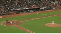 This is crazy! Baseball fan jumps into water to catch the ball: /A  螂 This is crazy! Baseball fan jumps into water to catch the ball