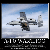 Memes, American, and Death: A-1 0 WART-HOG  Face it the A 10 doesn't fly it just stares down gravity  until it runs away sobbing and then, because itis so badass,  the air just decides to get out of its way  com a10 warthog brrt freedom badass hardcore brrrr fuckisis death american usa