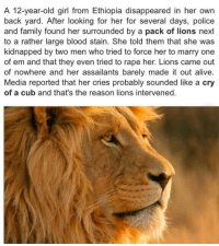 <p>Lions Protect Kidnapped Girl.</p>: A 12-year-old girl from Ethiopia disappeared in her own  back yard. After looking for her for several days, police  and family found her surrounded by a pack of lions next  to a rather large blood stain. She told them that she was  kidnapped by two men who tried to force her to marry one  of em and that they even tried to rape her. Lions came out  of nowhere and her assailants barely made it out alive  Media reported that her cries probably sounded like a cry  of a cub and that's the reason lions intervened. <p>Lions Protect Kidnapped Girl.</p>