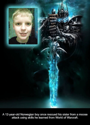 Lich King approves: A 12-year-old Norwegian boy once rescued his sister from a moose  attack using skills he learned from World of Warcraft. Lich King approves