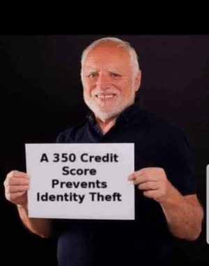 Shit, Credit Score, and Got: A 350 Credit  Score  Prevents  Identity Theft You guys got this shit all wrong