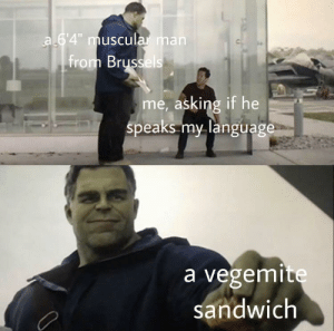 """Wholesome Brussels dude via /r/wholesomememes http://bit.ly/2Ng3yQq: a 6'4"""" muscularman  from Brussels  me, asking if he  speaks my language  a vegemite  sandwich Wholesome Brussels dude via /r/wholesomememes http://bit.ly/2Ng3yQq"""