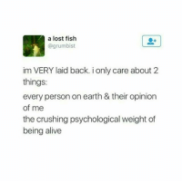 accurate: a a lost fish  @grumbist  im VERY laid back. i only care about 2  things:  every person on earth & their opinion  of me  the crushing psychological weight of  being alive accurate