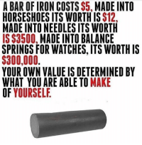 Capitalism in a nutshell.: A BAR OF IRON COSTS $5, MADE INTO  HORSESHOES ITS WORTH IS $12,  MADE INTO NEEDLES ITS WORTH  IS $3500, MADE INTO BALANCE  SPRINGS FOR WATCHES, ITS WORTH IS  $300,000.  YOUR OWN VALUE IS DETERMINED BY  WHAT YOU ARE ABLE TO MAKE  OF YOURSELE Capitalism in a nutshell.