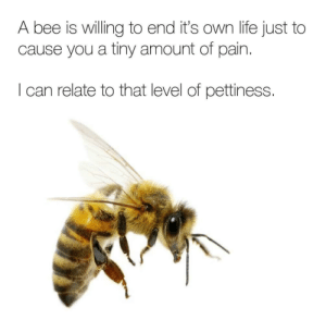 Some days I just feel petty: A bee is willing to end it's own life just to  cause you a tiny amount of pain  I can relate to that level of pettiness. Some days I just feel petty