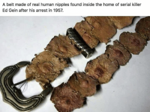 🤤: A belt made of real human nipples found inside the home of serial killer  Ed Gein after his arrest in 1957. 🤤