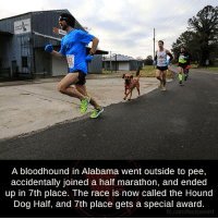 hound dogs: A bloodhound in Alabama went outside to pee,  accidentally joined a half marathon, and ended  up in 7th place. The race is now called the Hound  Dog Half, and 7th place gets a special award.  fb.com/factsweird