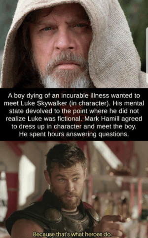 Let the force be with you: A boy dying of an incurable illness wanted to  meet Luke Skywalker (in character). His mental  state devolved to the point where he did not  realize Luke was fictional. Mark Hamill agreed  to dress up in character and meet the boy.  He spent hours answering questions.  Because that's what heroes do. Let the force be with you