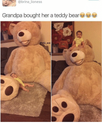😂😂The teddy bear is big AF. Grandpa of the decade. - -cr @brinabargee - - - - - 420 memesdaily Relatable dank MarchMadness HoodJokes Hilarious Comedy HoodHumor ZeroChill Jokes Funny KanyeWest KimKardashian litasf KylieJenner JustinBieber Squad Crazy Omg ovo Kardashians Epic bieber Weed TagSomeone hiphop trump rap drake: a @brina lioness  Grandpa bought her a teddy bear  @will ent 😂😂The teddy bear is big AF. Grandpa of the decade. - -cr @brinabargee - - - - - 420 memesdaily Relatable dank MarchMadness HoodJokes Hilarious Comedy HoodHumor ZeroChill Jokes Funny KanyeWest KimKardashian litasf KylieJenner JustinBieber Squad Crazy Omg ovo Kardashians Epic bieber Weed TagSomeone hiphop trump rap drake
