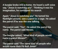 "Weird peoples: A burglar broke into a home. He heard a soft voice  say, ""Jesus is watching you"". Thinking it was his  imagination, he continued his search.  Again ""Jesus is watching you"" He turned his  flashlight around, saw a parrot in a cage. He asked  the parrot if he was the one talking.  The parrot said, ""Yes"". He asked the parrot his  name. The parrot said Moses.  The burglar asked, ""What kind of people would  name a parrot Moses?""  The parrot said ""The same kind of people who  would name their Pit Bull Jesus"" Weird peoples"