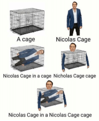 Love, Memes, and Nicolas Cage: A cage  Nicolas Cage  Nicolas Cage in a cage Nicholas Cage cage  Nicolas Cage in a Nicolas Cage cage If you like terrible memes you'll love @trashcanpaul