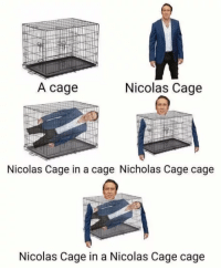Nicolas Cage: A cage  Nicolas Cage  Nicolas Cage in a cage Nicholas Cage cage  Nicolas Cage in a Nicolas Cage cage