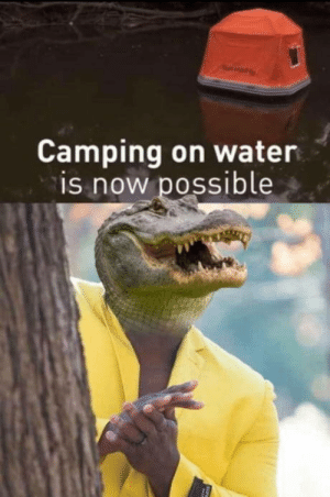 Water, Idea, and Now: A  Camping on water  is now possible Not the brightest idea around right now