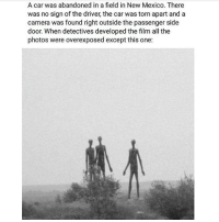 Memes, Camera, and Mexico: A car was abandoned in a field in New Mexico. There  was no sign of the driver, the car was torn apart and a  camera was found right outside the passenger side  door. When detectives developed the film all the  photos were overexposed except this one: - Such a nice day 😍😍 scarystories