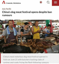 Memes, Festival, and 🤖: A CHANNEL NEWSASIA  Asia Pacific  China's dog meat festival opens despite ban  rumours  China's most notorious dog meat festival opened in  Yulin on June 21 with butchers hacking slabs of  canines and cooks frying the flesh following rumours Fina take a trip