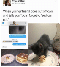 """Funny, Cat, and Madness: A Chase Stout  ChaserStout  When your girlfriend goes out of town  and tells you """"don't forget to feed our  cat  Kenzie Jones  Do you know if Wilson likes  chocolate chips in his pancakes  Today 0:01AM  did you give him some?  Would you be mad if I did  No lol 💖💖💖"""