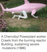 Chernobyl, Reactor, and Burning: A Chernobyl Powerplant worker  Crawls from the burning reactor  Building, sustaining severe  mutations (1986) Chernobyl (1986)