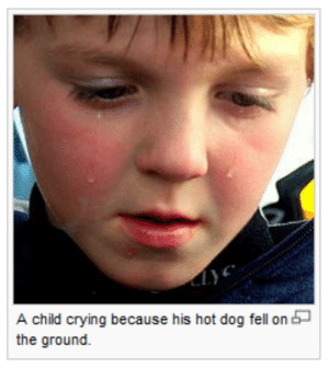 hot dog: A child crying because his hot dog fell on  the ground.