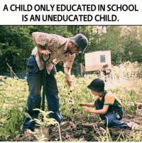 The education system is failing our children. We must teach our children how to think, not what to think. Read More: http://anonhq.com/?p=22972: A CHILD ONLY EDUCATED IN SCHOOL  ISAN UNEDUCATED CHILD. The education system is failing our children. We must teach our children how to think, not what to think. Read More: http://anonhq.com/?p=22972