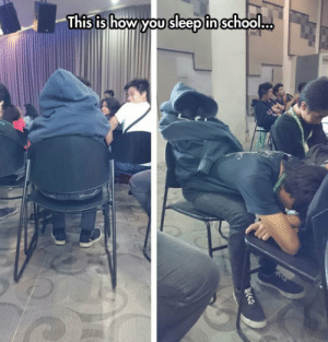 A Clever Way To Sleep In Classhttp://advice-animal.tumblr.com/: A Clever Way To Sleep In Classhttp://advice-animal.tumblr.com/
