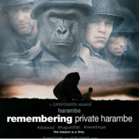 Harambe: A CLNTONFOUNDATION ASEASNADON  harambe  remembering private harambe  #dicksout August 30th tineverforget  the mission is a boy.