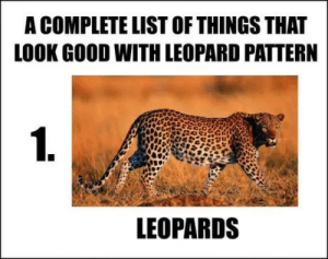 Dank, Memes, and Target: A COMPLETE LIST OF THINGS THAT  LOOK GOOD WITH LEOPARD PATTERN  1.  LEOPARDS Ironically worn by Cougars :D by jon-mcneil MORE MEMES
