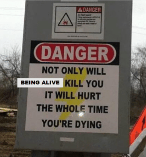 me_irl: A DANGER  DANGER  NOT ONLY WILL  BEING ALIVE KILL YOU  IT WILL HURT  THE WHOLE TIME  YOU'RE DYING me_irl