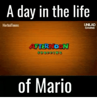 Kardashians, Memes, and Rap: A day in the life  HerbalToons  GAMING  AFTERNOON  SHOPPING  of Mario Lmao 👊🏻TAG your HOMIES👊🏻 - Like for good luck ignore for bad luck - 👌🏼check out my youtube - in bio - Partner- @rize.xnuclear My backup- @memes_are_mee.2 My clan- @rize_above.all - Support appreciated😉 👌🏼 Tags 🚫 IGNORE 🚫 420 memesdaily Relatable dank Memes HoodJokes Hilarious Comedy HoodHumor ZeroChill Jokes Funny KanyeWest KimKardashian litasf KylieJenner JustinBieber Squad Crazy Omg Accurate Kardashians Epic bieber Weed TagSomeone memesaremee trump rap drake