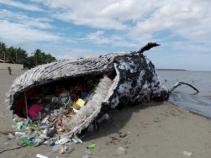 Whale, Wake, and Call: A Dead Whales wake-up call.