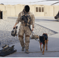 Memes, Afghanistan, and 🤖: A DEVGRU K9 handler and his MWD geared up for a mission in Afghanistan. https://t.co/dtNQC4LfEJ