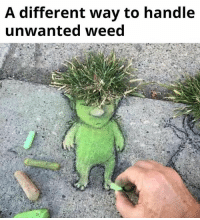 Weed: A different way to handle  unwanted weed