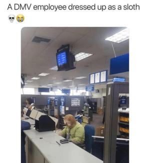 Um…..Flash: A DMV employee dressed up as a sloth  11 Um…..Flash