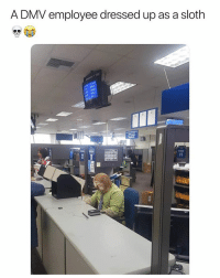 Dmv, Memes, and Sloth: A DMV employee dressed up as a sloth DMV in a nutshell 😂