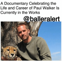 A Documentary Celebrating the Life and Career of Paul Walker Is Currently in the Works - blogged by: @ashleytearra ⠀⠀⠀⠀⠀⠀⠀ ⠀⠀⠀⠀⠀⠀⠀ It's been almost five years since we lost the honorable PaulWalker, but his memory is still very much alive. ⠀⠀⠀⠀⠀⠀⠀ ⠀⠀⠀⠀⠀⠀⠀ Exclusively reported by Deadline, Paramount Network and Network Entertainment are teaming up to produce an all-new documentary that is set to chronicle the life, career, and death of the 'Fast and the Furious' actor. ⠀⠀⠀⠀⠀⠀⠀ ⠀⠀⠀⠀⠀⠀⠀ Directed by Adrian Buitenhuis, the film, titled, 'I Am Paul Walker' will feature candid interviews from fellow castmates and close friends of Walker's, along with an inside look at his lifestyle away from the fancy film sets and fast living. ⠀⠀⠀⠀⠀⠀⠀ ⠀⠀⠀⠀⠀⠀⠀ Viewers can also expect to gain insight on his passion for beautiful oceans, the marine life, and his mission to help rebuild Haiti after the disastrous earthquake. ⠀⠀⠀⠀⠀⠀⠀ ⠀⠀⠀⠀⠀⠀⠀ Additional details will be available soon. ⠀⠀⠀⠀⠀⠀⠀ ⠀⠀⠀⠀⠀⠀⠀ Unfortunately, at the age of 40, Walker's life ended abruptly due to a tragic car crash, which took place back in November of 2013. ⠀⠀⠀⠀⠀⠀⠀ ⠀⠀⠀⠀⠀⠀⠀ His ashes were buried at Forest Lawn Memorial Park in Hollywood Hills.: A Documentary Celebrating the  er of Paul Walker Is  Currently in the Works  @balleralert A Documentary Celebrating the Life and Career of Paul Walker Is Currently in the Works - blogged by: @ashleytearra ⠀⠀⠀⠀⠀⠀⠀ ⠀⠀⠀⠀⠀⠀⠀ It's been almost five years since we lost the honorable PaulWalker, but his memory is still very much alive. ⠀⠀⠀⠀⠀⠀⠀ ⠀⠀⠀⠀⠀⠀⠀ Exclusively reported by Deadline, Paramount Network and Network Entertainment are teaming up to produce an all-new documentary that is set to chronicle the life, career, and death of the 'Fast and the Furious' actor. ⠀⠀⠀⠀⠀⠀⠀ ⠀⠀⠀⠀⠀⠀⠀ Directed by Adrian Buitenhuis, the film, titled, 'I Am Paul Walker' will feature candid interviews from fellow castmates and close friends of Walker's, along with an inside look at his lifestyle away from the fancy film sets and fast living. ⠀⠀⠀⠀⠀⠀⠀ ⠀⠀⠀⠀⠀⠀⠀ Viewers can also expect to gain insight on his passion for beautiful oceans, the marine life, and his mission to help rebuild Haiti after the disastrous earthquake. ⠀⠀⠀⠀⠀⠀⠀ ⠀⠀⠀⠀⠀⠀⠀ Additional details will be available soon. ⠀⠀⠀⠀⠀⠀⠀ ⠀⠀⠀⠀⠀⠀⠀ Unfortunately, at the age of 40, Walker's life ended abruptly due to a tragic car crash, which took place back in November of 2013. ⠀⠀⠀⠀⠀⠀⠀ ⠀⠀⠀⠀⠀⠀⠀ His ashes were buried at Forest Lawn Memorial Park in Hollywood Hills.