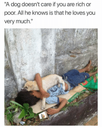 "Funny, Shit, and Wednesday: ""A dog doesn't care if you are rich or  poor. All he knows is that he loves you  verv much. I did not intend to cry on a Wednesday afternoon but shit happens"