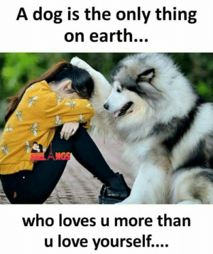 Love, Memes, and Earth: A dog is the only thing  on earth...  Amos  who loves u more than  u love vourself....